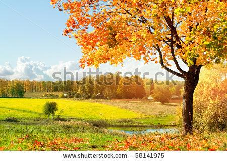 Shutterstock Autumn